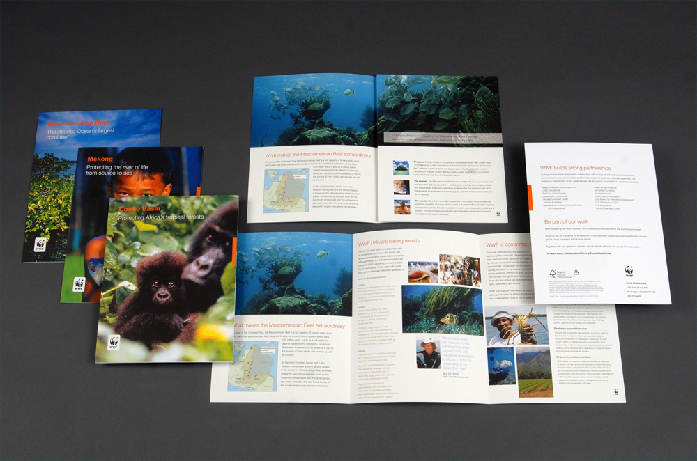 WWF Trifold Brochure Unfolded