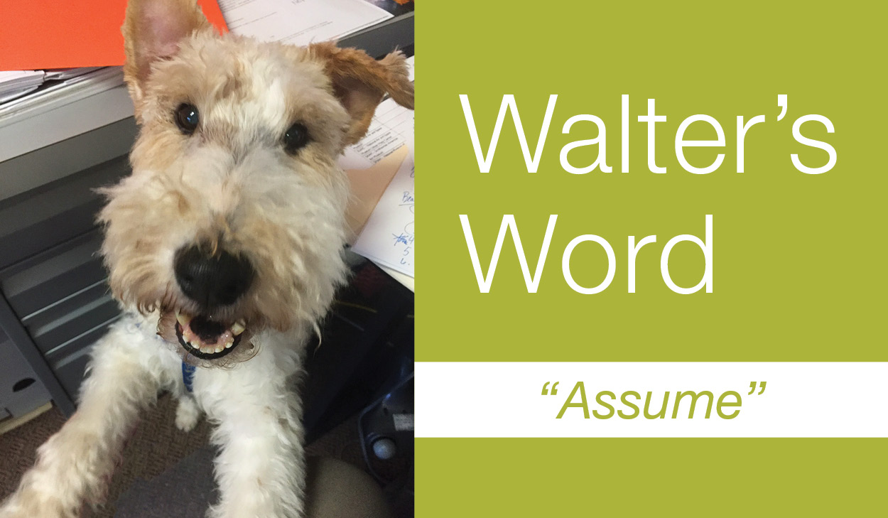 Walter's Word: Assume