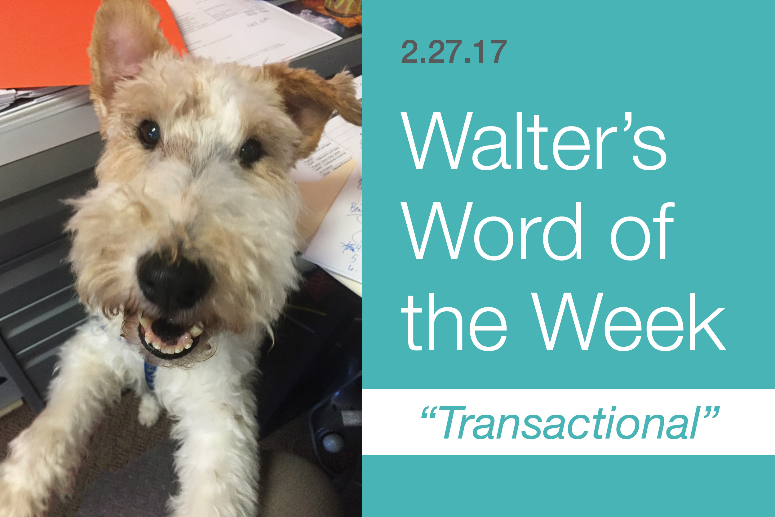 Walter's Word of the Week: Transactional